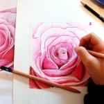 crayons de couleur aquarellable (Salomé , 9 ans)